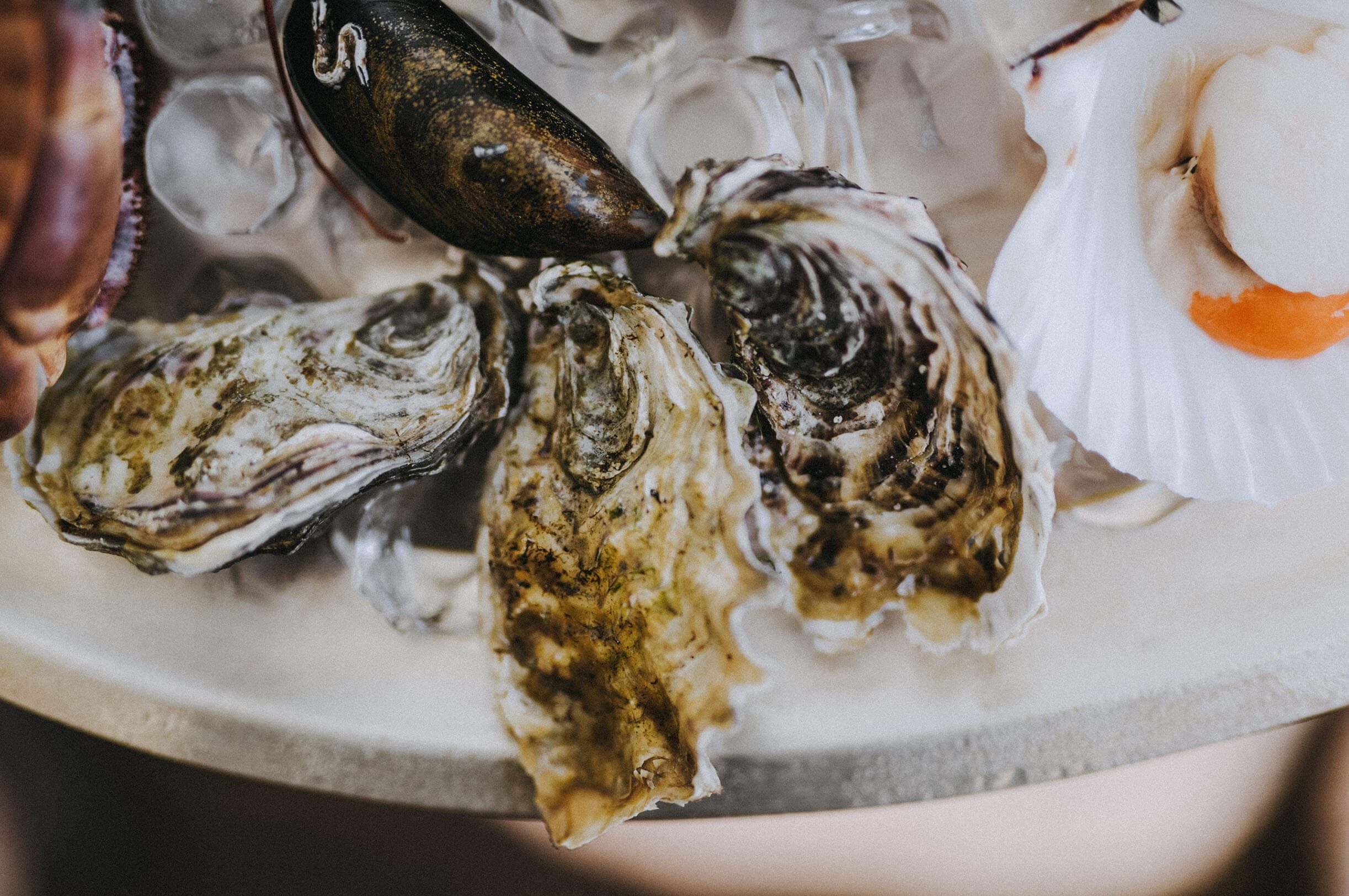 Mark Hix Oyster and Fish Truck A35 Morcombelake